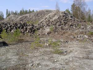 Öster och väster om Herr Stens botten finns tusentals ton varp som tagits upp ur innanmätet av det gamla schaktet. Det var utskilt berg som inte innehöll silvermalm. Här syns fornminnesskyddade Klockhögen. Foto: Åke Johansson
