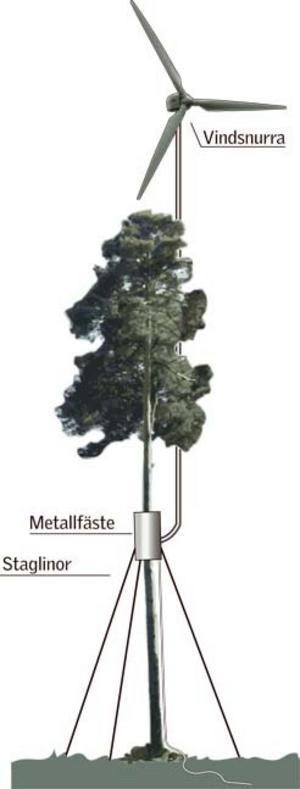 Bertil Perssons idé att fästa vindkraftverket på ett träd skulle göra att man slipper den klumpiga och dyra konstruktionen att bygga ett torn till vindsnurran. Illustration: Kjell Nilsson-Mäki