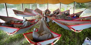Skogsfloating. Mötesdeltagarna lägger sig i var sin hängmatta och sedan kan samtalet börja. Här är den en enhet från Botkyrka kommun som diskuterar. Ett tak är för dagen uppsatt på grund av regn.