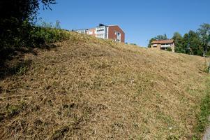 Det är till och med så torrt att det torra gräset frasar och låter när man går på det. Slänt på Montörvägen.