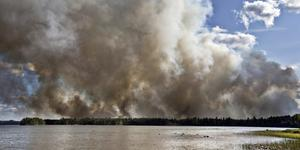 Bilden tagen i samband med det stora skogsbranden 2014.