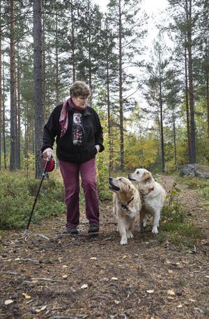 Annika Östberg går ofta i skogen med sin två golden retrivers.