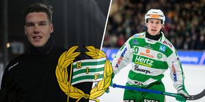 Max och Ted Bergström är båda klara för två säsonger i Hammarby.