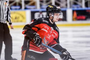 Filip Lander bildar ett effektivt backpar tillsammans med Tommy Stenqvist.