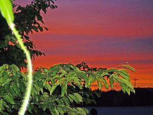 Solnedgång i norr en fin försommarkväll i Västerås