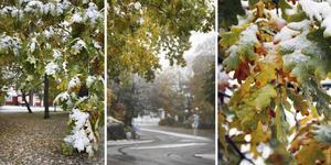 År 2010 kom den första snön redan den 22 oktober. Bilderna tagna vid