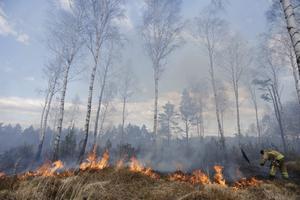 Risk för gräsbrand utfärdas under våren när risken är stor att bränder uppstår och lätt sprids i det torra fjolårsgräset.
