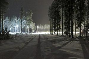 Ingvar Borg avled efter en skoterolycka som inträffade vid lunchtid på torsdagen i närheten av Åsarna skid- och skidskyttestadion.