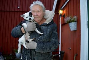 Matte Irene Vadell Hagren föll pladask för hunden Ganne, en blandras med bland annat chihuahua, och tog med sig honom hem från Thailand. Trots att han var handikappad.