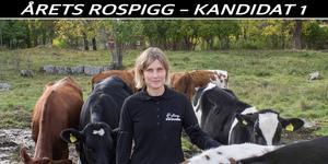 Anette Gustawson kan bli årets rospigg.