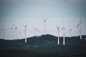Vindkraftverk i Björkvattnets vindkraftpark. Foto: Anders Nilsson