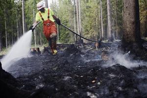 Skogsbränder har ofta varit något beredskapsstyrkan åkt på. Foto: TT