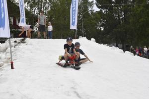 Nils och Adrian Lissdaniels från Torsång testar pulkaåkning på snö.