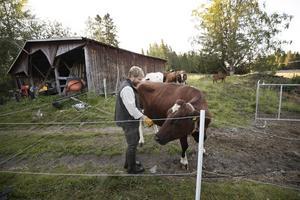 Johan Östlund fick upp ett öga för den opastöriserade mjölken på grund av sin juridiska bakgrund.