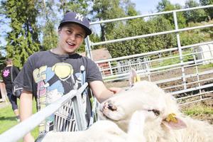 Felix Åstrand, 9 år, tyckte att det bästa med bondgården var att han fick klappa de mjuka fåren.