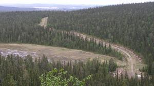 Växande produktiv skog behövs för att hålla nere klodioxidhalten, anser skribenten.