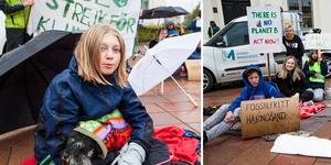 Tove Angelöw och hunden Greta var två av de ungdomar som påbörjade demonstrationen på torget tidigt på fredagsmorgonen.