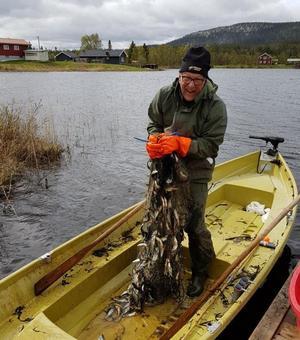 Under projektet har drygt 9 000 mörtar fiskats upp ur sjön i Glöte.