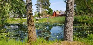 På den tomt bredvid kvarnen på Torekällberget, där ett värdshus tidigare stod, vill Södertäljeföretaget Qetar bygga ett hotell. Men det passar inte in på platsen, menar Liberalerna.