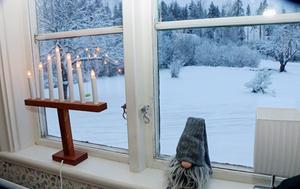 Vitt vintrigt landskap utanför fönstret.
