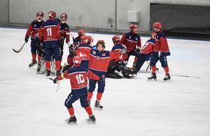 Sex av de norska spelarna spelar till vardags i Sverige. Bild: Janerik Henriksson/TT