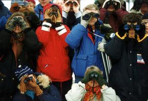 Fågelskådning är populärt. Även representanter för fågelskådare ska bjudas in för möten. Foto: Björn Larsson Ask/TT