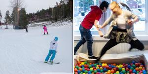 Gärdeåsskolans mellanstadium och grundsärskolan får dela på årets Frirumsstipendium.