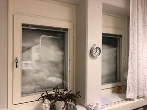 Det må ha kommit 2 decimeter snö över en natt i Jönköping, men Lina Ingold passade på att dela denna bild från sitt kontor i Örnsköldsvik... Foto: Lina Ingold