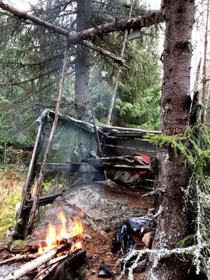 Älgpass från Vikingatiden?Älgpass med stor jaktstämning i den djupa granskogen. Foto: Mats-Åke Hall