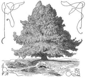 Världsträdet Yggdrasil. Illustartion av Lorenz Frølich från 1895.