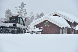 Smågan ligger begravd i djup snö.
