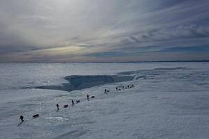 Den packade isen var synbart oändlig.