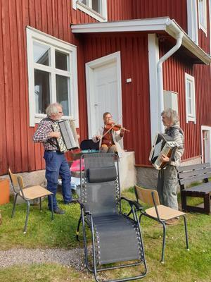 Klint Olle mfl. Fotograf: Kent Nilsson/Läsarbild
