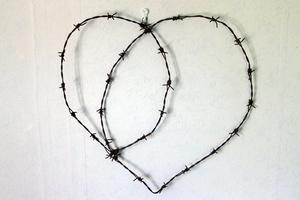 Hjärta av taggtråd, Anneli Vestman.
