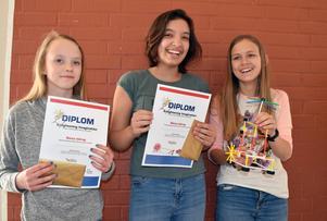 Emma Björkman, Amanda Raad och Elinor Dalevall på Domnarvets skola blev förvånade över att deras modell Kalkspridaren tog hem ett av förstapriserna.