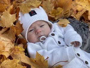Lilla Justin i lövhögen blev månadens bild i oktober. Foto: Ida Norgren.
