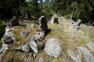 Klovsten, 60,5 hektar (ligger mellan Skebobruk, Älmsta och Hallstavik). Varierat barrdominerat område. Har fått sitt namn efter ett gränsröse i reservatet. Röset har ett stort kulturhistoriskt värde. exempel på skyddsvärda arter: äggspindling, jättesvampmal och nötkråka. Foto: Länsstyrelsen