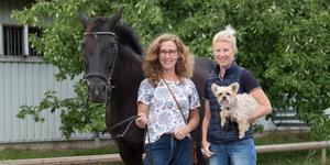Anette Lundblad, Maria Grimhammar och SRK:s dressyrhäst Jennifer.