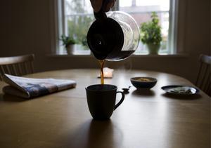 Morgonstund har guld i mund. Fotograf: Henrik Montgomery.