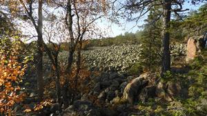 Ett av många klapperstensfält vi passerade. Foto: Åke Öberg