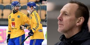 Michael Carlsson – Sveriges nästa förbundskapten? BILD: Björn Larsson Rosvall (TT)/Adam Ihse (TT)