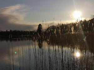 En magisk promenad vid Infjärden. Foto: Marga Wahlqvist
