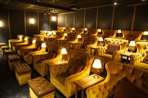 Biografen på Turbine hotell har 21 platser.