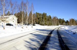 I skogspartiet vid Strömstadsvägen föreslås det nya villaområdet ligga.
