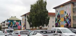 På husen runt parkeringarna på Bagargränd i Ljusdal har husgavlarna blivit till konstverk i starka färger.