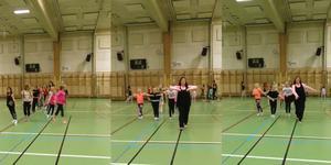 Ett trettiotal dansare underhöll publiken i Södra skolans aula. Foto: privat