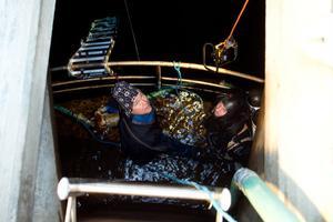Tuff miljö. Det är kargt och kallt inne i Söderhamns vattentorn. Dagarna är ofta långa för dykarna som jobbar många mil hemifrån.