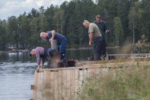 Målet är att bryggan ska bli mer tillgänglig för allmänheten, både från land och för båtar.