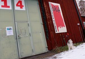 Om Noa försvinner kommer det uppstå ett kulturellt vakuum i Norrtälje, skriver sex medlemmar i Norrtälje ateljéförening (Noa).