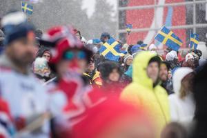 Under VM fakturerade två bolag; Siljan Chark och Nils Olsson Hemslöjd i Nusnäs, där dalahästen tillverkas. De bolagen fakturerade två miljoner sammanlagt till VM-bolaget. I de båda bolagen finns klara personliga kopplingar till Sven von Holst.